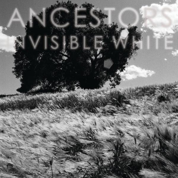 Invisible-White